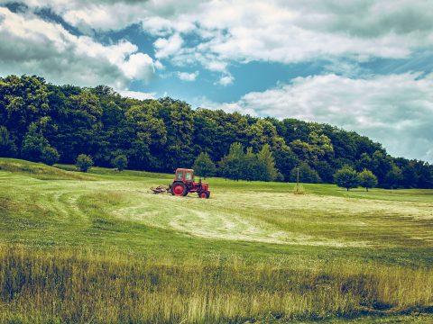 Análise de solo para agricultura, ciência que traz mais produtividade