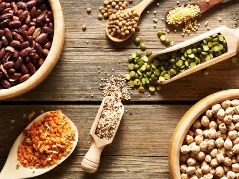 Análises microbiológicas para alimentos de origem vegetal