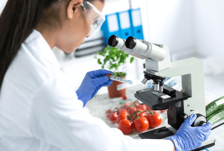 Análises microbiológicas para indústria alimentícia